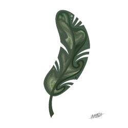 Leaves / Palm leaves