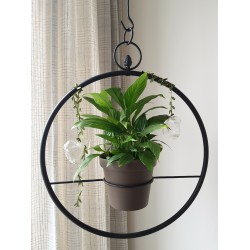 Planter Plant suspension point little