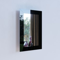 Зеркало NS2 01